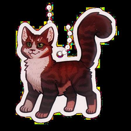 Chai the Cat, Travel Tag, Katze