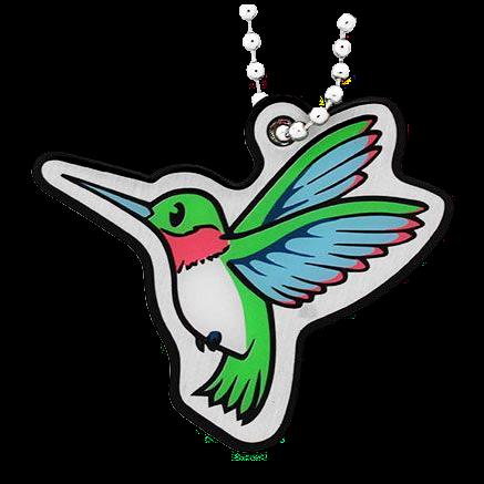 Hummingbird, Cachekinz, Kolibri