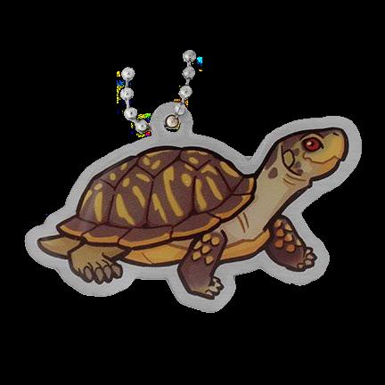 Maurice the Turtle, Schildkröte Travel Tag
